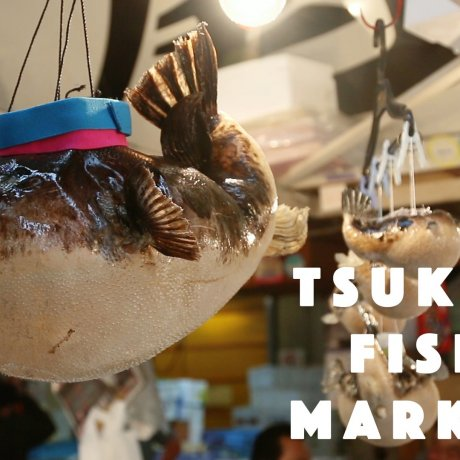 The One & Only Tsukiiji Fish Market