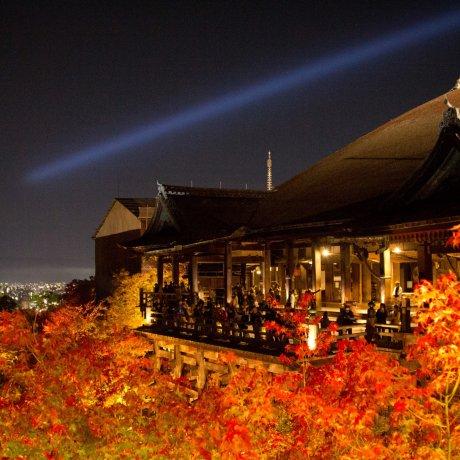 Kiyomizu-dera Autumn Illumination