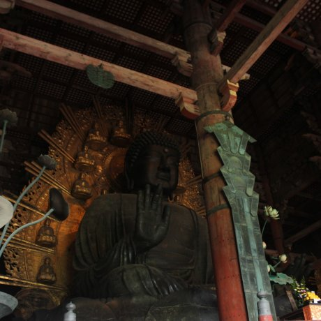 Big Buddha's Legacy in Nara