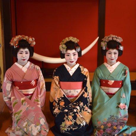 The Maiko of Somaro Teahouse