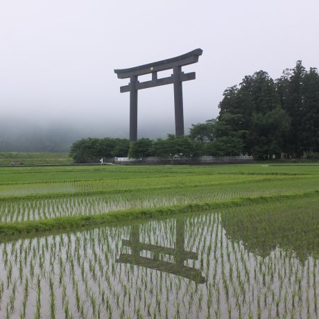 Kumano Hongu's Oyunohara Torii Gate