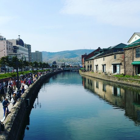 Food Galore in Otaru