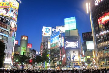 Shibuya Crossing