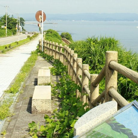 Toyama Bay Cycling Courses