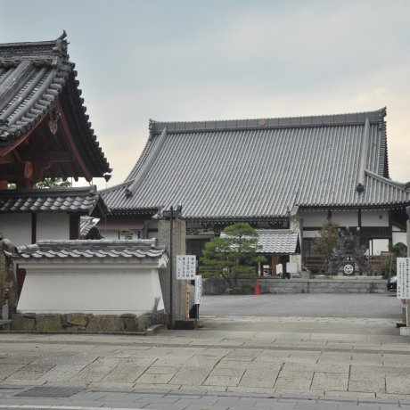 Living Japanese History in Hikone