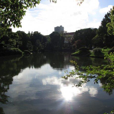 Kyu-Yasuda Teien Gardens