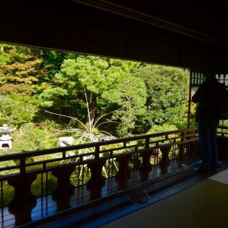 Niigata's Saito Family Summer Villa