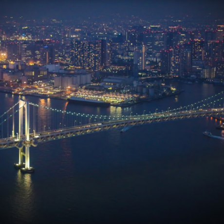 Panoramic Helicopter Tour Over Tokyo