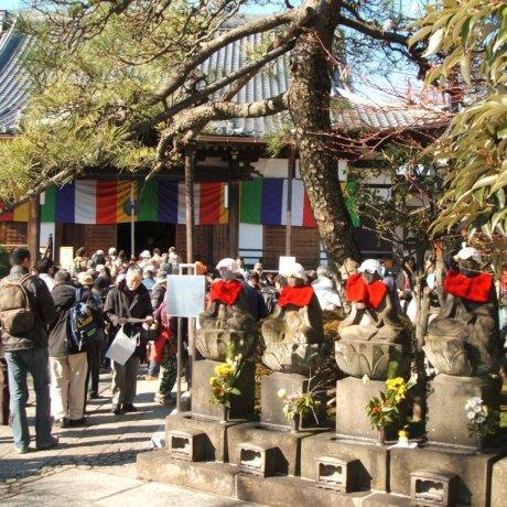 7 Lucky Gods New Year Pilgrimage