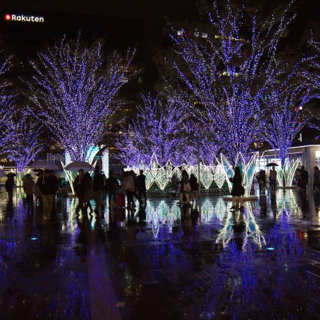 Hakata Christmas Market