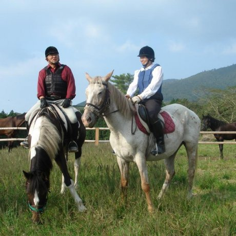 Kirishima Art Ranch and Horse Trust