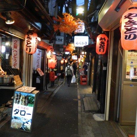 Restaurant Alleys in Tokyo