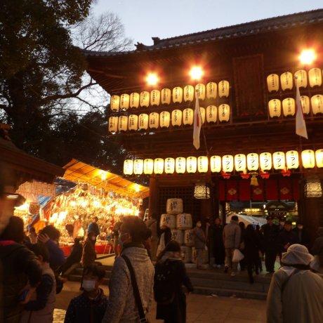 Tsubaki Matsuri