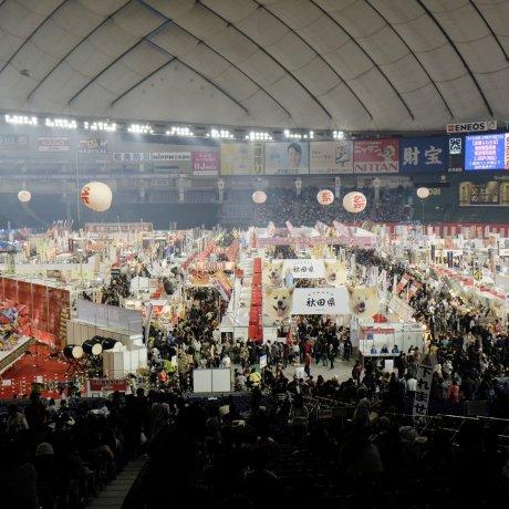 Furusato Matsuri at Tokyo Dome