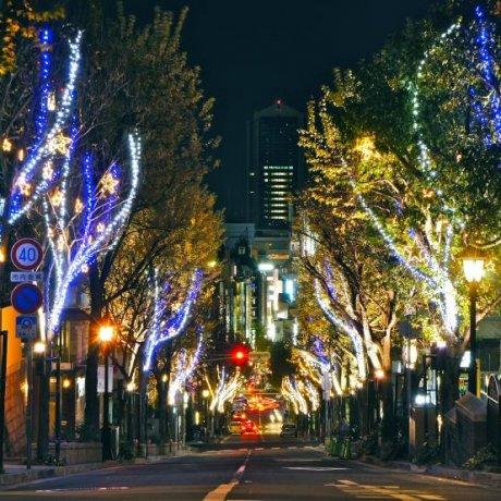 Kobe Kitano Christmas Street