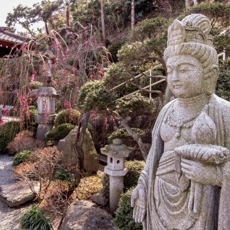 Yokosuka's Joenji Temple