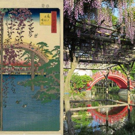 Фестиваль фудзи в храме Камэйдо Тэндзин