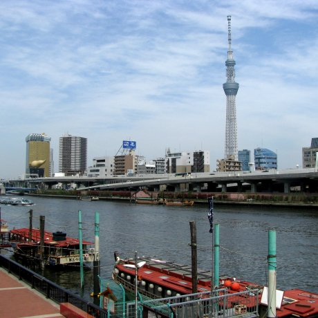 The Sumida Embankment