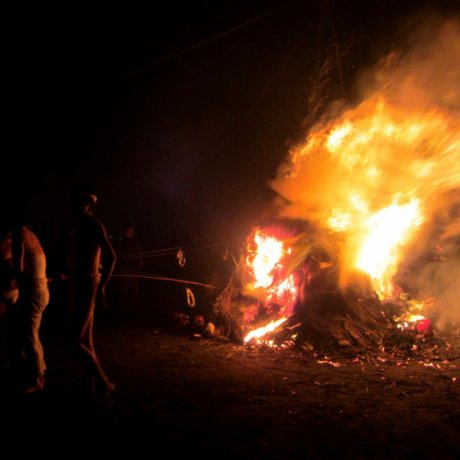 Oiso's Sagicho Festival