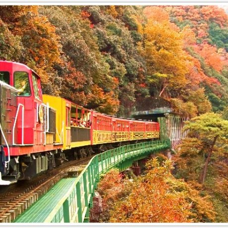 Japan Rail Passes, Better than Ever