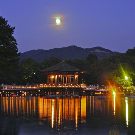 Nara Tokae and the Ukimido Pavilion