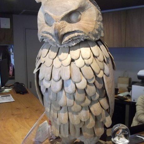 Wise Owls Hostel in Shibuya