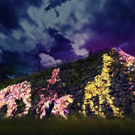 Light Festival at Fukuoka Castle Ruins