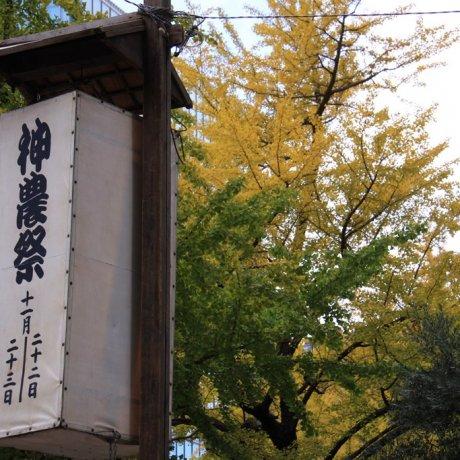 Shinno-sai Festival