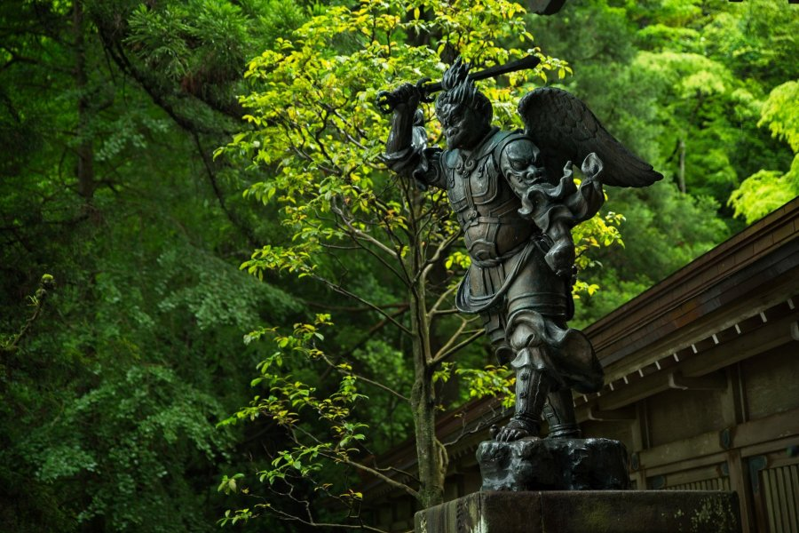 Discover Mystic Beauty at Daiyuzan Saijoji Temple