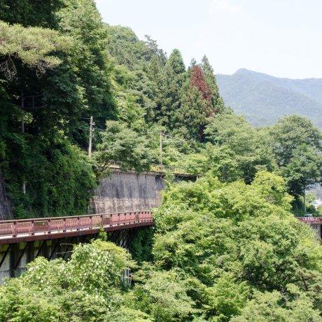 Agatsuma Gorge