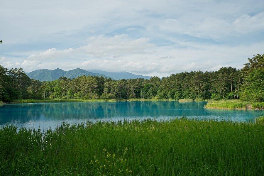 The Amazing Hues of Goshikinuma