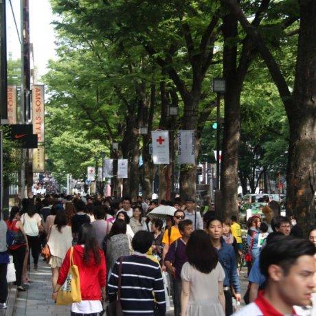 Cat Street, Harajuku/Omotesando