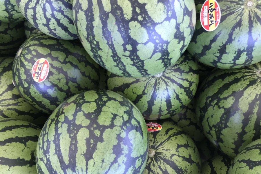 Yairo Watermelon Festival