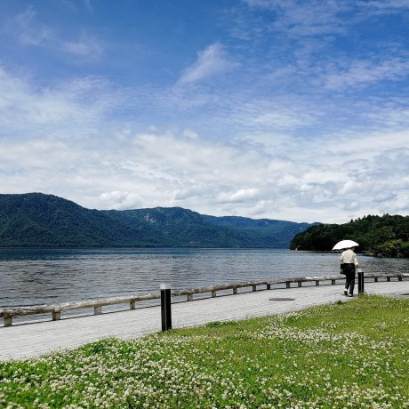 Lake Towada Backpackers Hostel