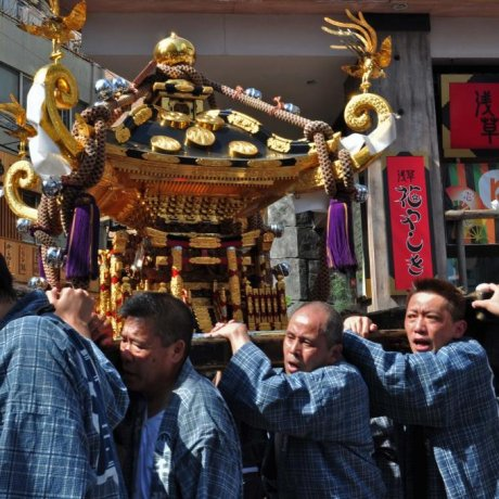 The Nishi-Asa San-Kita Mikoshi