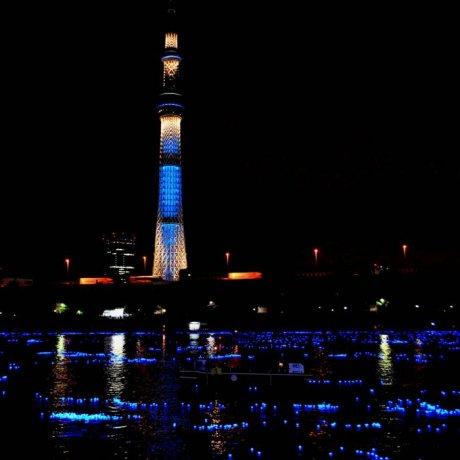 Tokyo Hotaru Festival 2013