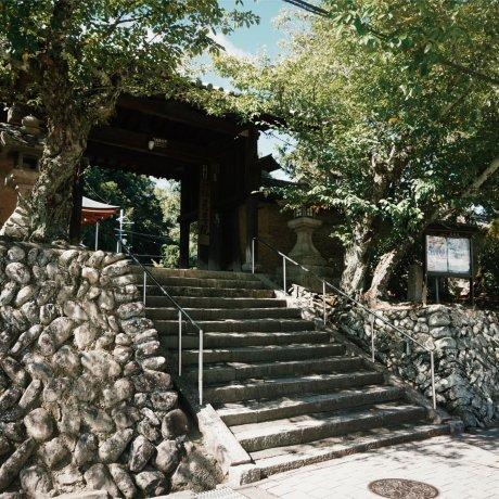 Niutsushime-jinja Shrine & Jison-in Temple