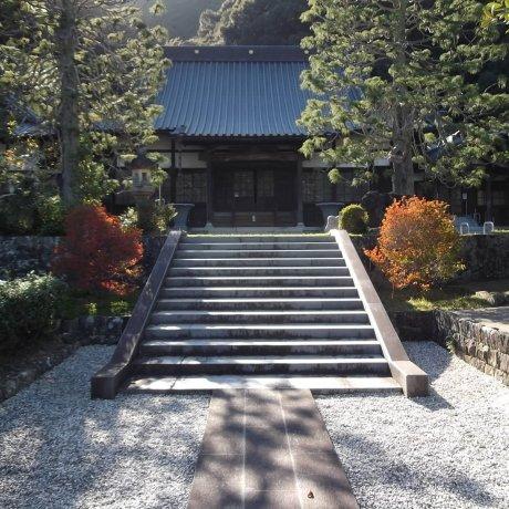 Seigan-ji Temple in Mariko
