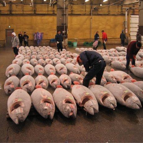 Tokyo's Tsukiji Market Relocates