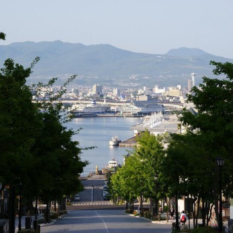 Hakodate: From dusk until dark
