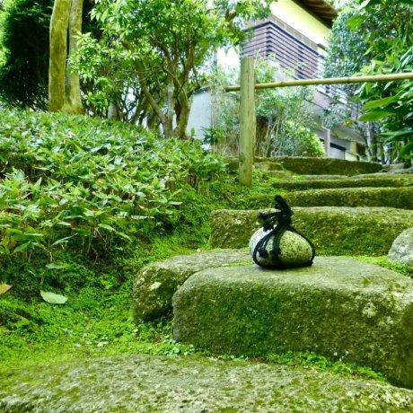 Hokoku-ji Temple in Spring