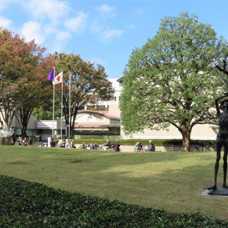 Setagaya Art Museum Exhibitions
