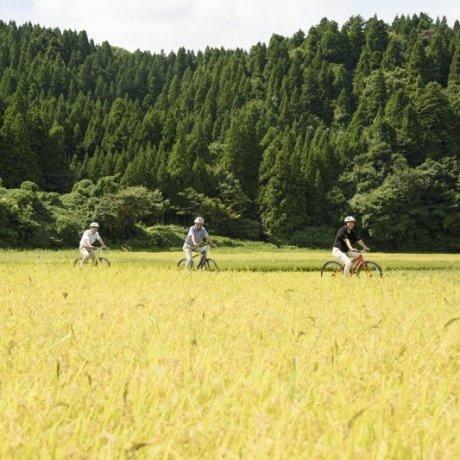 Satoyama Living in Wajima, Noto