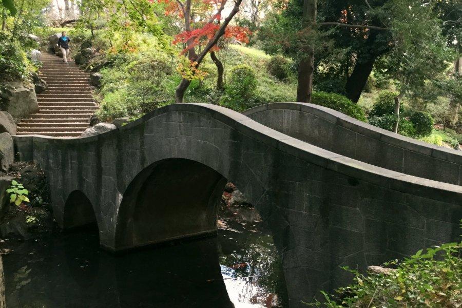 Arisugawa Park in Autumn