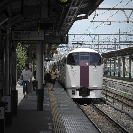 Holiday Rapid View Yamanashi