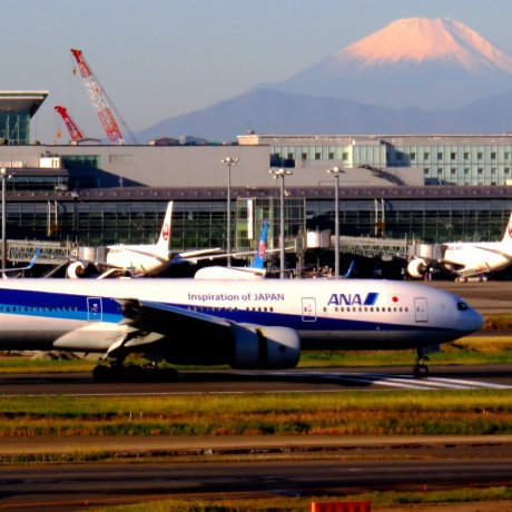 Fly Direct From Perth to Tokyo