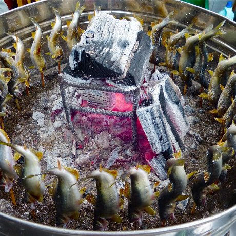 Tochigi's Kurobane Sweetfish