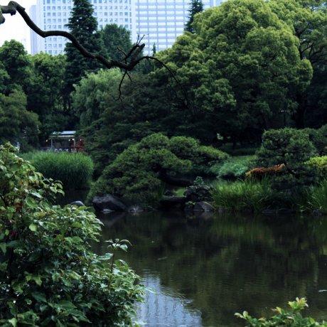 Hibiya Park in Central Tokyo