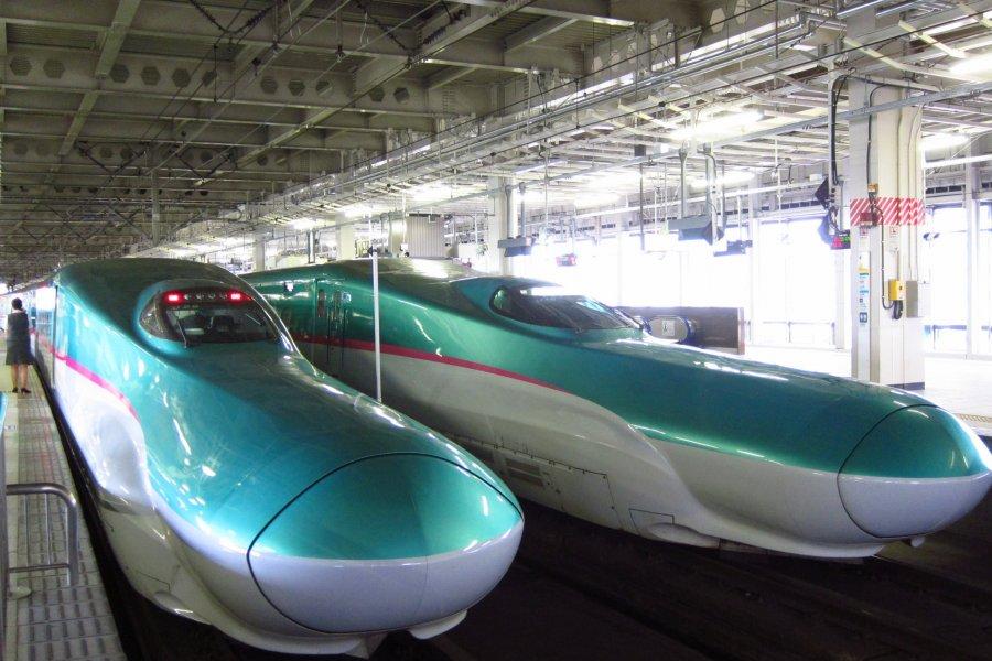 Hayabusa Tohoku Shinkansen