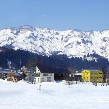 "Echigo-Tsumari Art Field 2019 Winter ""SNOWART"""